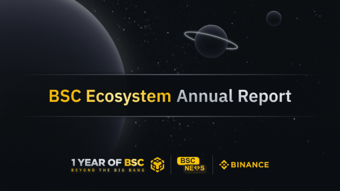 BSC Ecosystem Annual Report