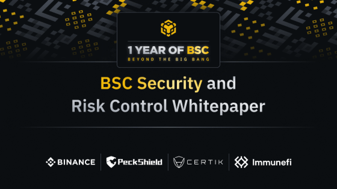 BSC Security and Risk Control WhitePaper